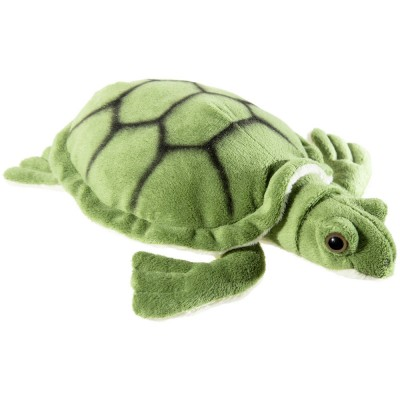 Misanimo Schildkröte